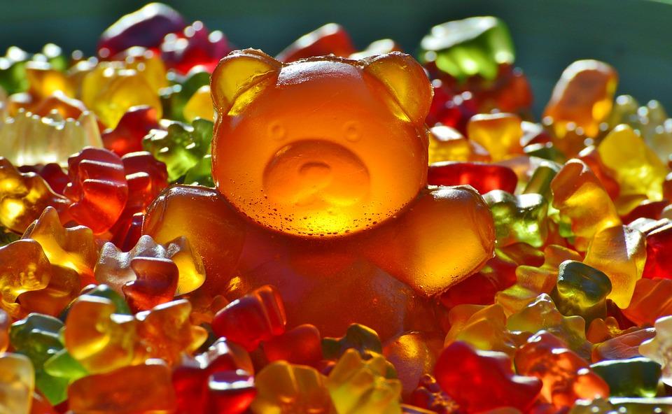 giant rubber bear 1089612 960 720_Centru_Nutritie